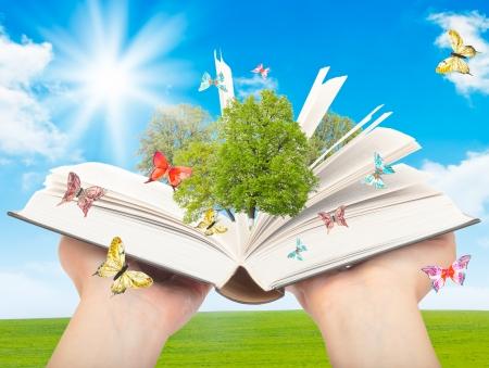 Magisches Buch in menschliche Hände mit einem grünen Baum und die Lichtstrahlen auf dem Hintergrund der Natur. Symbol des Wissens.