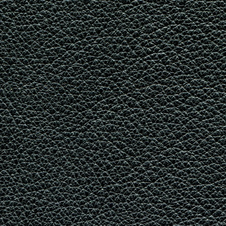 Leather texture made from deer skin photo