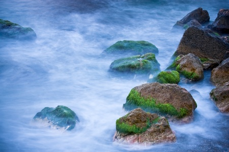 algas verdes: Rock en paisaje de algas verdes