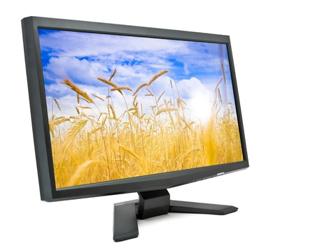 flat panel monitor: Computer monitor isolated on white background with field of rye on screen (my photo). Stock Photo