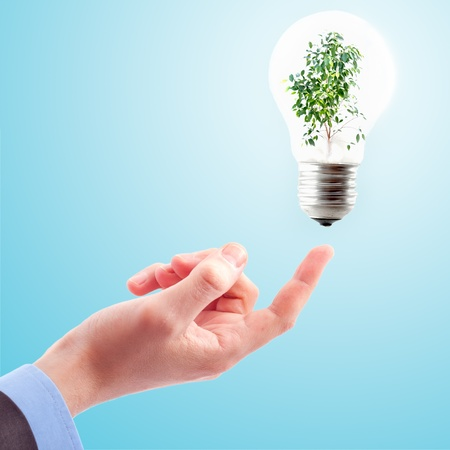 Hand with lamp and plant Stock Photo - 9698561