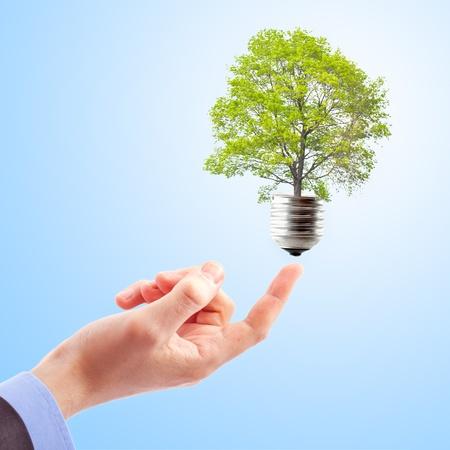 gezondheid: Hand met lamp en boom. Concept van duurzame energie Stockfoto