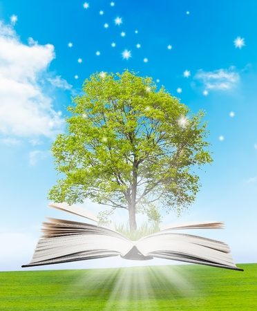 tree of knowledge: Magic book with a green tree and the rays of light on the background of nature. Symbol of knowledge.