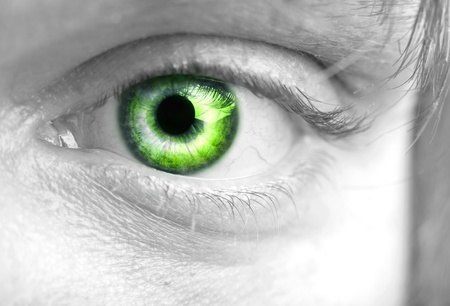 The beautiful green male  eye  closeup Stock Photo - 9701343