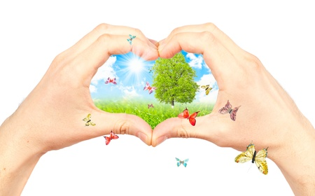 animal welfare: Human hand and nature. Symbol of the environment. Collage.