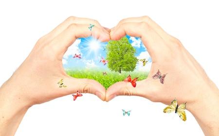 tierschutz: Menschliche Hand und Natur. Symbol f�r die Umwelt. Collage.