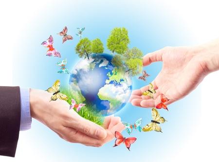 La terre dans des mains humaines, des herbes, des arbres et des papillons. Concept de terre de patrimoine pour les générations futures Banque d'images