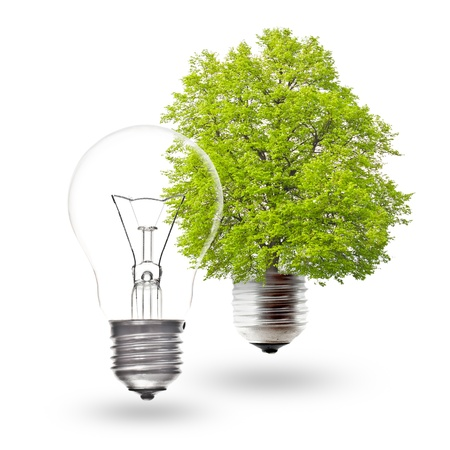 Electric light bulb and green light bulb on a white background. The concept of renewable energy. Stock Photo - 9893925