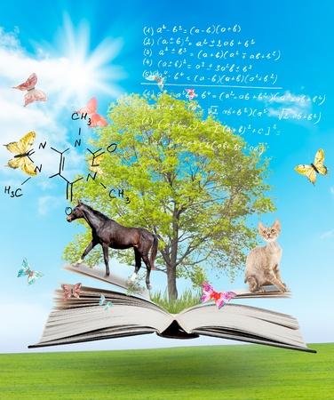 educacion: Libro m�gico con un verde �rbol y diferentes animales en el fondo de la naturaleza. S�mbolo de conocimiento