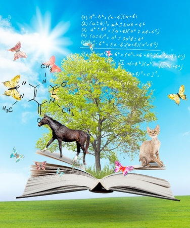 wisdom: Magic book with a green tree and diferent animals on the background of nature. Symbol of knowledge Stock Photo