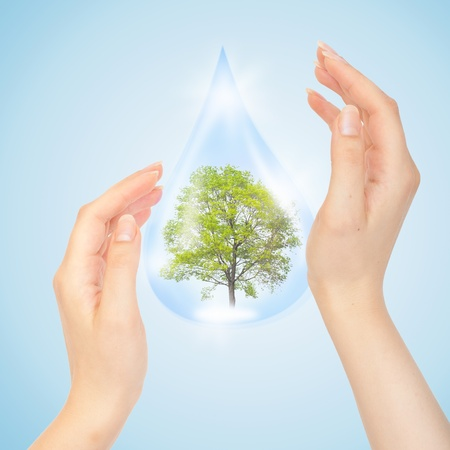 save the planet: Drop of water with Tree inside and hands. The symbol of Save Green Planet