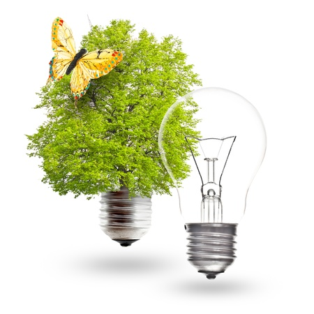 Electric light bulb and green light bulb with butterfly on a white background. The concept of renewable energy. photo
