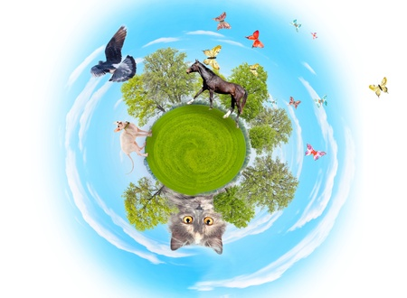 Little planet with trees and different animals on blue sky background photo