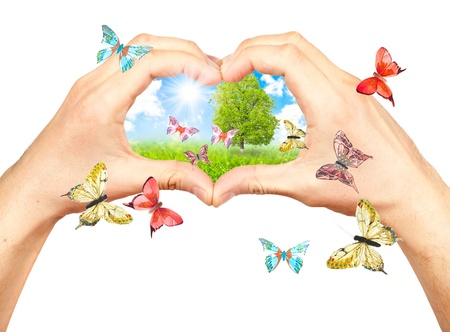 welfare plant: Human hands and nature. Symbol of the environment. Collage