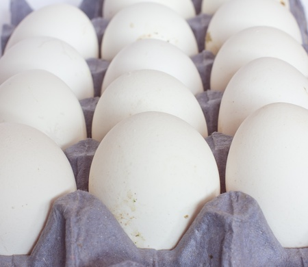 Ð¡lose-up Eggs in tray Stock Photo - 12350516