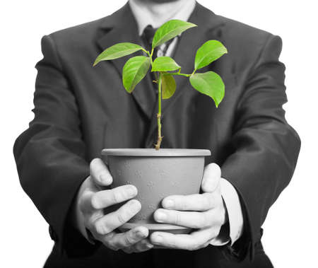 Businessman is holding a plant in pot. Isolated on white photo