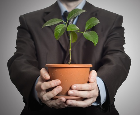 Businessman is holding a plant in pot  On dark gradient background photo