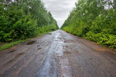 bumpy: Bumpy road receding into the distance right