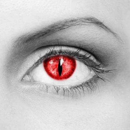 lupo mannaro: L'occhio del vampiro