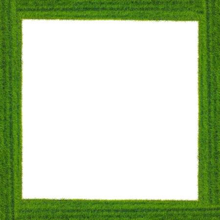 whitem: Green grass frame on white