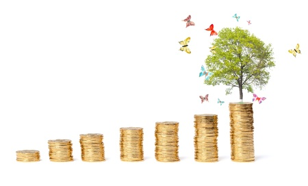 The concept of a successful business, butterflies around a tree on a coins mountain photo