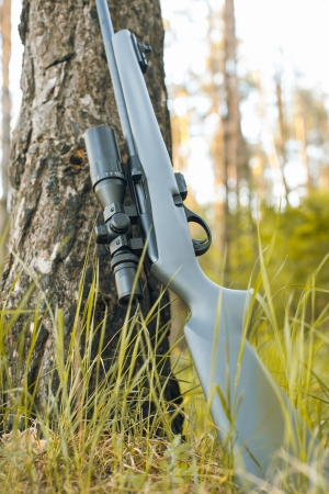 Rifle with telescopic sight in outdoor Stock Photo