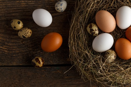 quail nest: Fresh chicken and quail eggs in a nest on a wooden rustic background