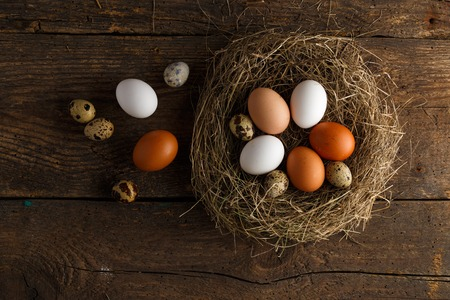 gamme de produit: Fresh chicken and quail eggs in a nest on a wooden rustic background