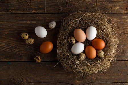 product range: Fresh chicken and quail eggs in a nest on a wooden rustic background