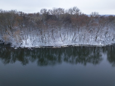 Aerial view of the winter forest covered with snow and standing on the river bank