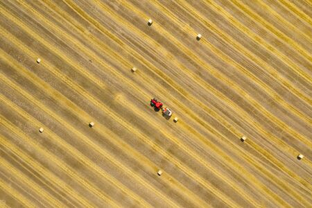 Top view of haymaking processed into round bales. Red tractor works in the field.