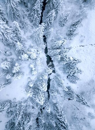 Flight over the river surrounded by trees and banks of snow-covered at the foot of the Carpathian Mountains