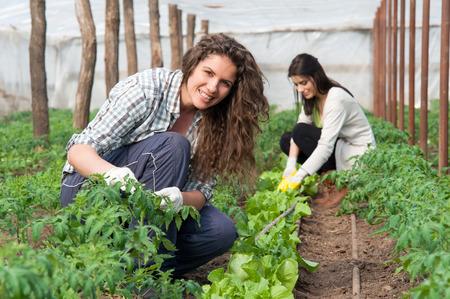 Groen huis werker en andere vrouwelijke werknemer op de achtergrond