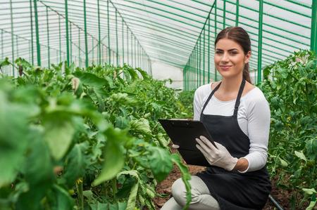 制服の温室で仕事で若い女性の肖像画と彼女の手の温室でクリップボード生産食品生産温室のトマト成長しています。