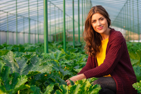 Beautiful young woman gardening and smiling at camera. Greenhouse produce. Food production.