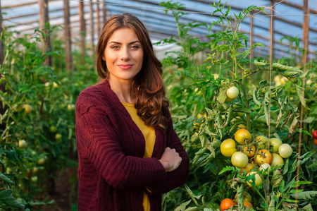 smiling woman in a greenhouse: Beautiful young woman gardening and smiling at camera. Greenhouse produce. Food production.