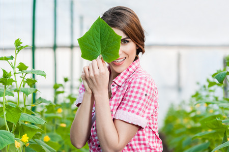 Beautiful young woman gardening and smiling at camera in a greenhouse with cucumber plants