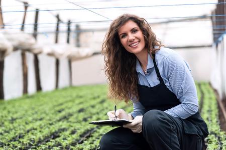 invernadero: Joven y bella mujer ingeniero de biotecnolog�a con el sujetapapeles y la pluma, la escritura y el examen de las plantas para la enfermedad en invernadero con el delantal y los guantes. Productos de efecto invernadero. La producci�n de alimentos.