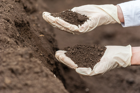 Close-up of a young researcher technician woman hands in greenhouse,in uniform, holding soil . Bio food production. Standard-Bild