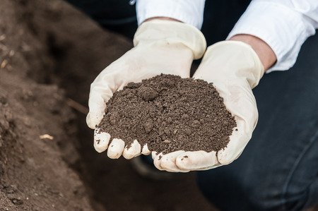 earth pollution: Close-up of a young researcher technician woman hands in greenhouse,in uniform, holding soil . Bio food production. Stock Photo