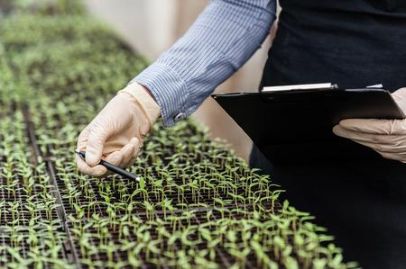 クリップボードとペンを病気のための植物を調べるバイオ女性エンジニア!