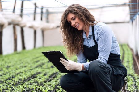 Beautiful young biotechnology woman engineer with clipboard and pen, writing and examining plants for disease in greenhouse with apron and gloves. Greenhouse produce. Food production.