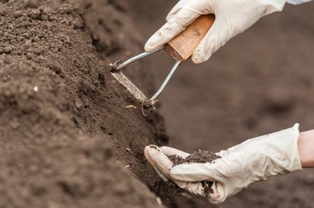 Close-up van een jonge onderzoeker technicus vrouw handen in de kas, in uniform, houden de bodem. Biologische voedselproductie.