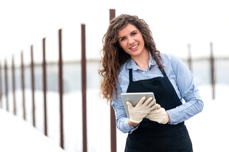 work environment: Female researcher technician studying with a tablet and gloves, dressed in office clothes,office shirt and apron in all withe greenhouse. Stock Photo