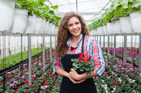 Florists woman working with flowers in a greenhouse. Imagens