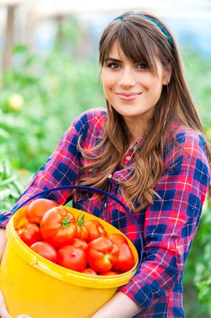 Junge Frau in einem Gewächshaus mit Tomaten, einen Behälter zu halten.