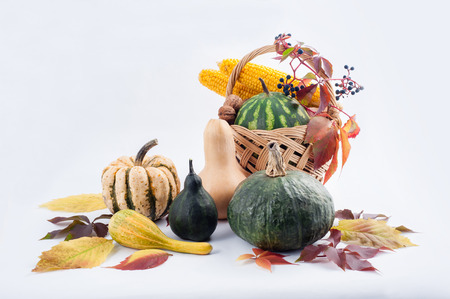 fall harvest: Autumn and Thanksgiving concept. Seasonal fruit and pumpkins in basket on isolated background.