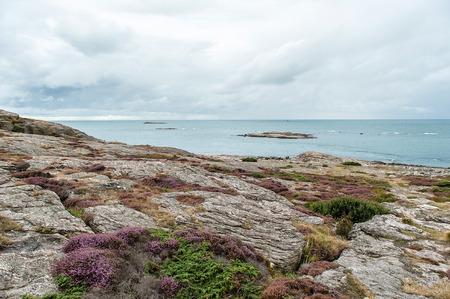 Beautiful wild landscape in the Scandinavia cost line. 写真素材