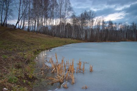 confines: Ice on the forest pond