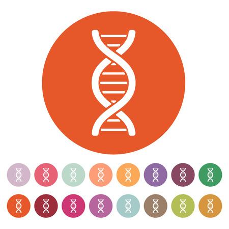 adn humano: El icono de la DNA. Símbolo de ADN. Ilustración vectorial Flat. Botón Set